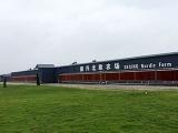我公司领导赴广东德兴牧业北欧农场参观学习