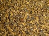 棉籽粕不适用于仔猪、母猪
