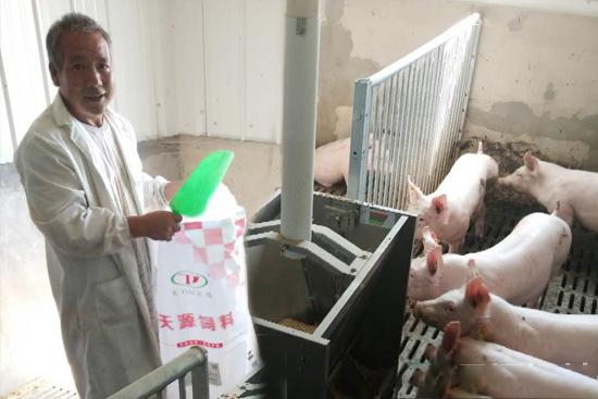山东天源与山东省种猪性能测定站成为战略合作伙伴