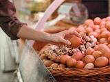 鸡蛋价格一波三折 九月呈缓慢走低趋势